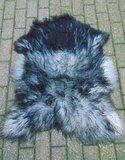 V4P69, IJslands schapenvacht, IJslander, 116x86cm_