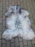 V5P69, IJslands schapenvacht, IJslander, 125x90cm_