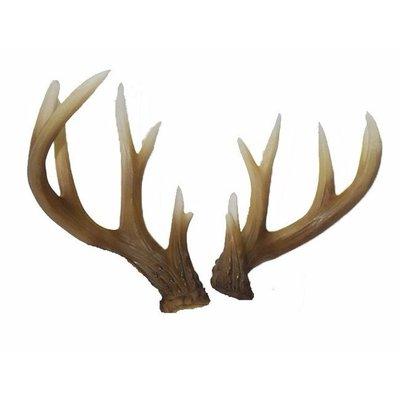 Hertengewei naturel 28x12x9cm 1 stuks