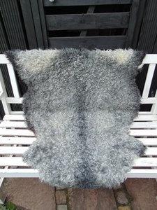 G3P74, Gotland, dik schapenvacht, grijs gemeleerd