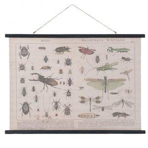 Clayre & Eef Wandkaart insecten 105x2x76 cm